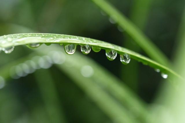 不快感ともオサラバ!?梅雨の湿気対策