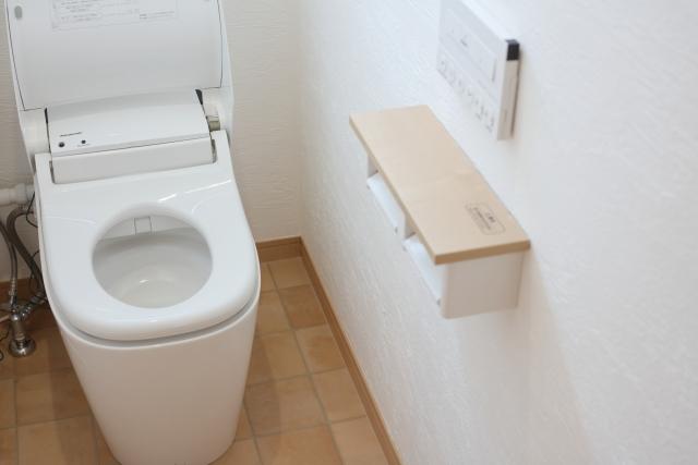 風水的な力が実はあった!トイレに置く観葉植物の驚きの効果