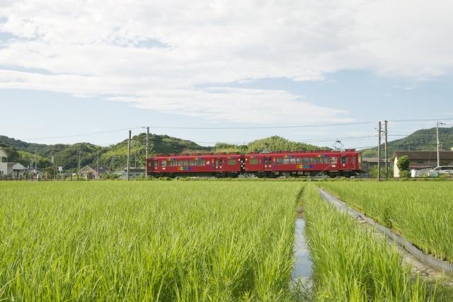イチゴ狩り!関西の電車ですぐ行ける!